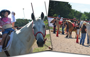 2013 RED Arena Round-Up – Playday June 1st, Dripping Springs, TX