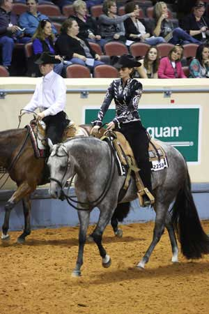 AQHA horse-showing judges to ask for lengthened strides in western pleasure in 2013