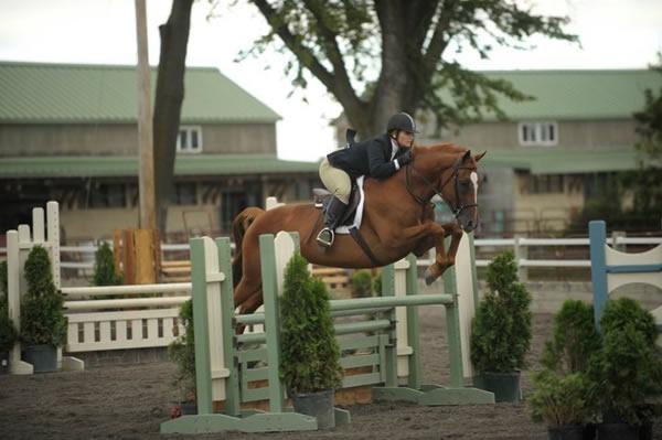 Tracy Percival Forman Hunter/Jumper Clinic