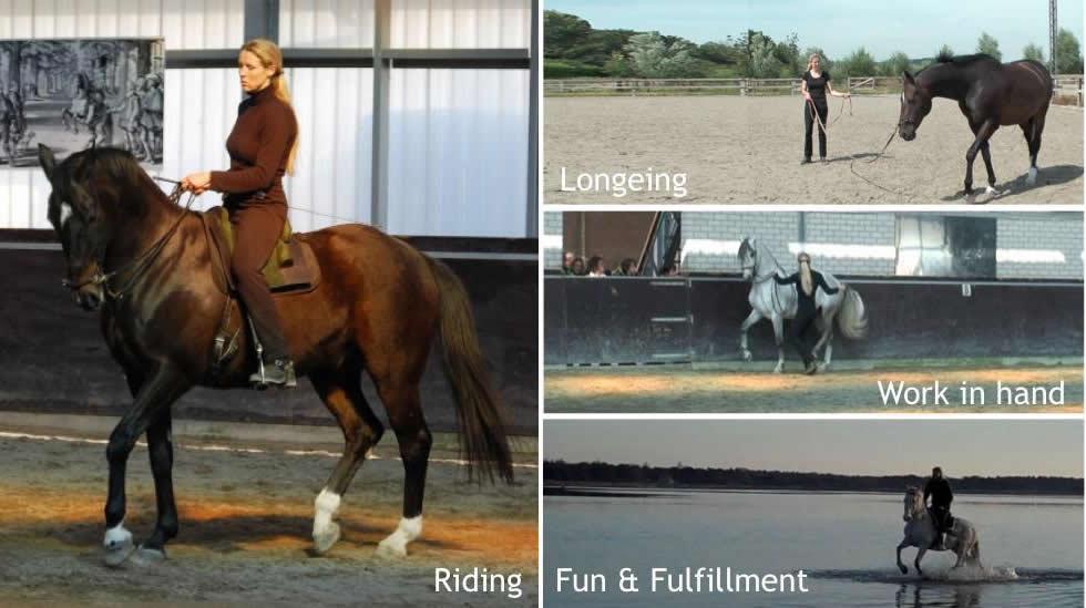 Straightness Training Clinic with Marijke de Jong – Elgin, TX