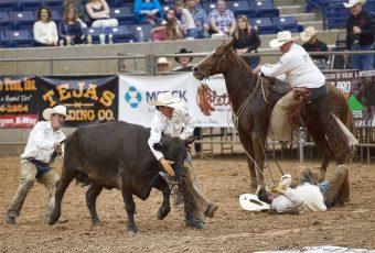 Amarillo National Center – 2017 Horse Shows