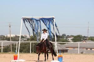 BEHS Bluebonnet Rescue Horse Training Challenge Offers $10,000 in Prize Money