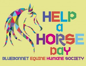 Bluebonnet Equine Humane Society #HelpAHorse Donations Needed