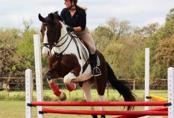 AEC Combined Test Horse Show – 2018 Spring Series #3 – Cedar Creek, TX