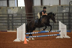 Texas Hunter Jumper and Eventing Shows 2018