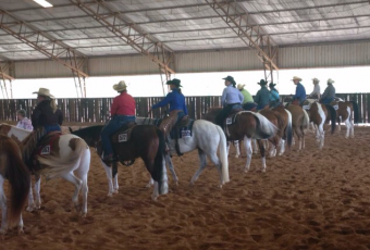 """Paint Performance Horse """"Stay & Play Kick-Off"""" Mini Series #1 Clinic & Show – Jan, 2018"""