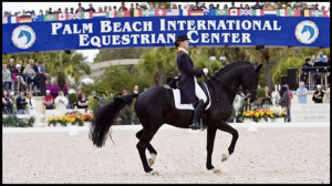 Palm Beach Int'l Equestrian Center Global Dressage Educational Event - 5* FEI Judge Gary Rockwell