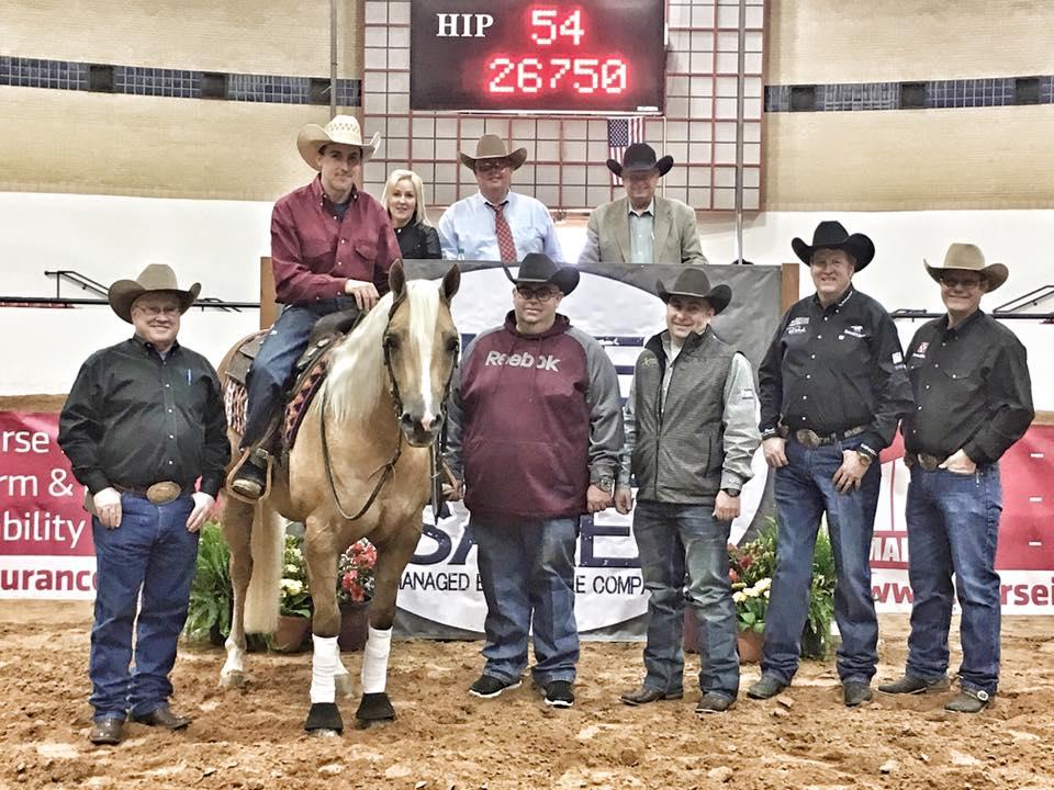 Horse Sales Amp Auctions 2018 Austin Horse Directory
