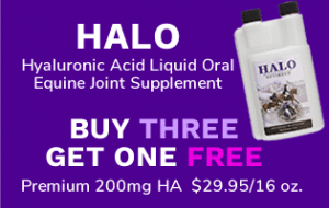 HALO Hyaluronic Acid Equine Joint Supplement