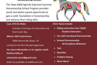 Texas A&M AgriLife Extension Summer Horsemanship School Clinic 2018 – Bryan, TX