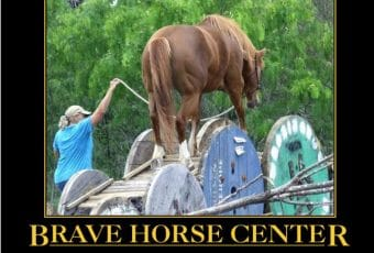 Brave Horse Center Desensitization Clinic Prequel July 13-15, 2018