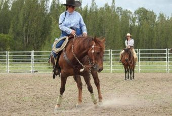 Lee Smith Horsemanship Clinic Texas